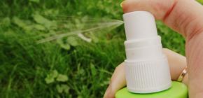 Средства защиты от укусов клещей для человека