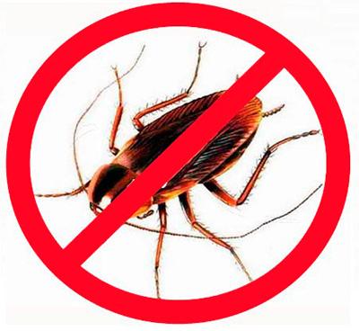 Применение современных инсектицидов