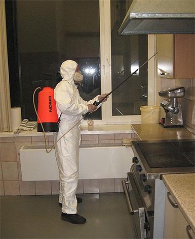 Работник службы дезинсекции обрабатывает квартиру