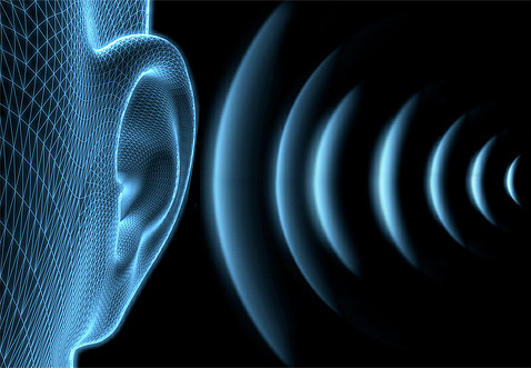 Человеческое ухо не слышит ультразвуковые сигналы отпугивателя