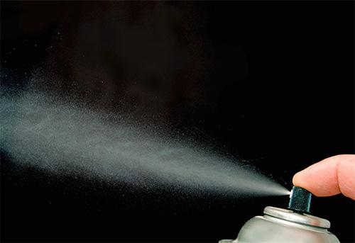 Инсектицидные аэрозоли позволяют наиболее быстро уничтожить моль и ее личинки