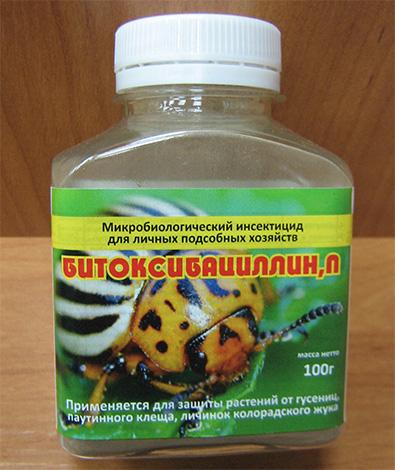 Битоксибациллин хорошо зарекомендовал себя в борьбе с капустной молью
