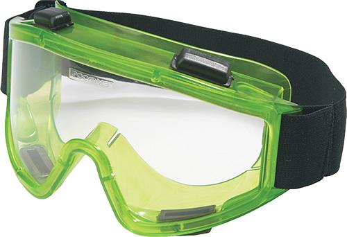 Во время процедуры уничтожения клопов следует использовать защитные очки