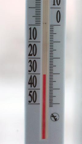 Крепкий мороз убивает вшей весьма эффективно и быстро