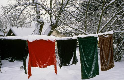 Если вывесить одежду на мороз, бельевые вши в ней быстро погибнут