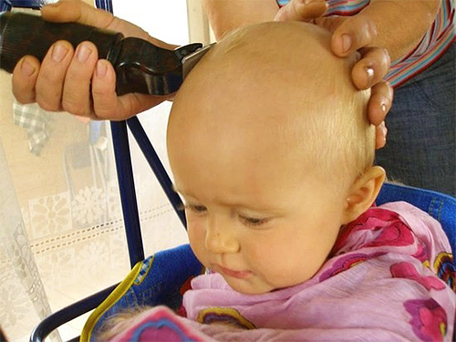 Стрижка наголо - радикальный, но вместе с тем весьма эффективный способ борьбы со вшами