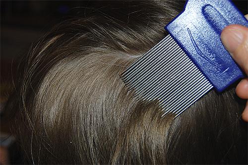 При температуре +42 градуса вши настолько ослабевают, что их легко потом вычесать из волос
