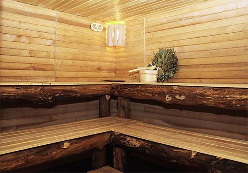 Вероятность заражения лобковыми вшами высока в общественных банях