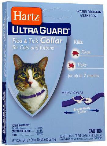 Прежде чем использовать ошейник от блох, стоит проверить кожу кота на чувствительность к входящим в его состав инсектицидам