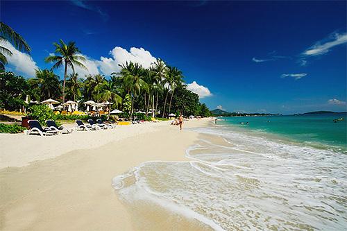 Уважающие себя отели во Вьетнаме и Тайланде серьезно относятся к чистоте своих пляжей