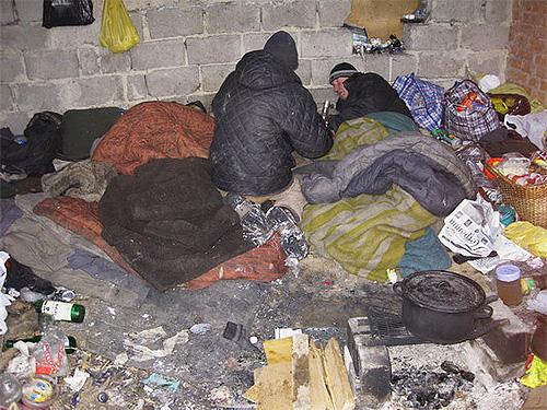 Подвальные блохи могут жить в кучах оставленного мусора