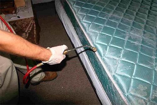 Как правило, дезинсекция помещений от клопов проводится с использованием инсектицидов