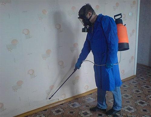 На фото - профессиональный дезинсектор во время обработки помещения от блох