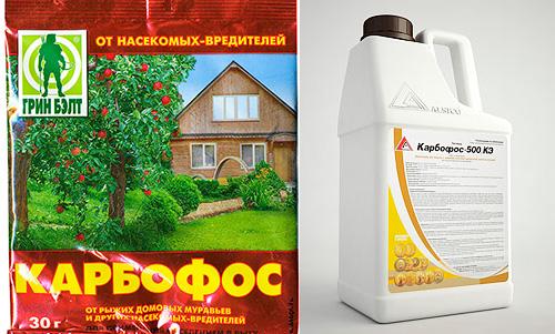 Инсектицидное средство Карбофос производится как в виде порошка, так и в виде жидкости (концентрата эмульсии)
