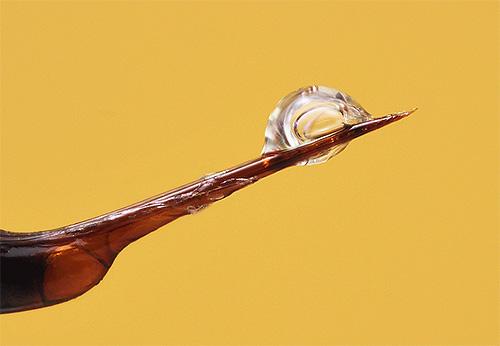 На фото показано жало шершня с ядом