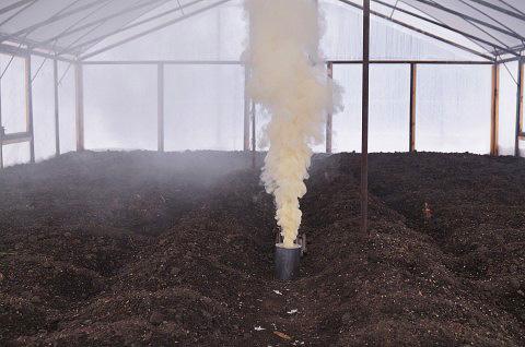 Часто дымовые шашки применяют в теплицах для уничтожения насекомых и грибков