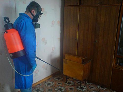 Если самостоятельно не удалось избавиться от муравьев в доме, стоит обратиться за помощью к профессиональным дезинсекторам.
