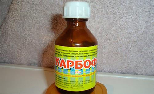 Немного устаревшее средство для уничтожения насекомых - всем известный Карбофос.