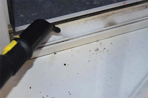 Пример использования пароочистителя против клопов.
