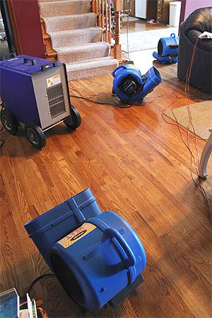 Использование мощных теплогенераторов позволяет создать в квартире губительную для клопов высокую температуру.