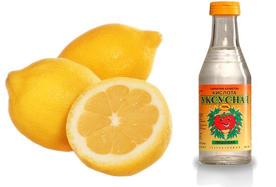 Лимонная кислота и уксус могут частично нейтрализовать яд шершня.