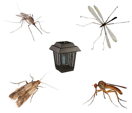 Выбираем оптимальную модель уничтожителя насекомых, как уличных, и так и внутри дома...