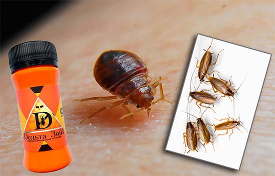 Знакомимся со свойствами препарата Дельта Зона и особенностями его применения против клопов и тараканов.