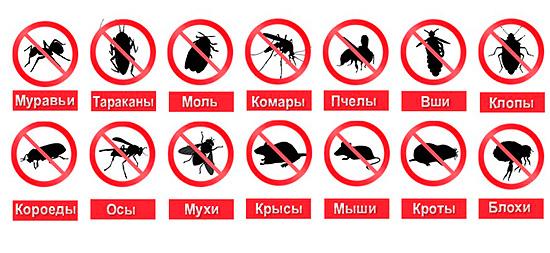 Некоторые производители отпугивателей заявляют, что их приборы эффективно отпугивают любых насекомых и грызунов.