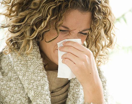 Причиной длительной заложенности носа может стать аллергия на тараканов.