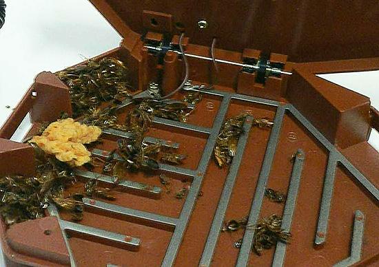 А вот электрические ловушки-домики подходят для уничтожения ползающих насекомых (тараканов, муравьев, мокриц и др.)