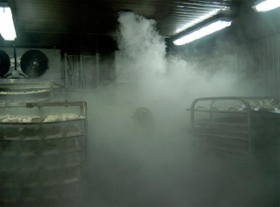 Размер частиц холодного тумана очень маленький, поэтому инсектицидное аэрозольное облако легко проникает даже в самые труднодоступные места.