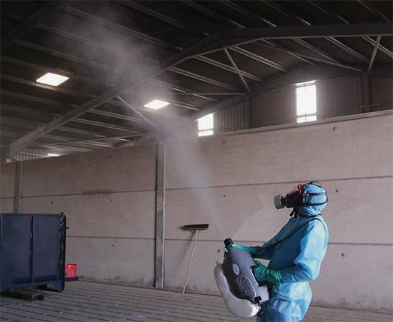 На фото показан пример генератора холодного тумана в действии.