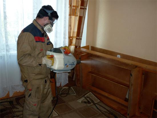 Специалист-дезинсектор отлично знает, какие места в квартире нужно обработать в первую очередь, чтобы наверняка уничтожить клопов.