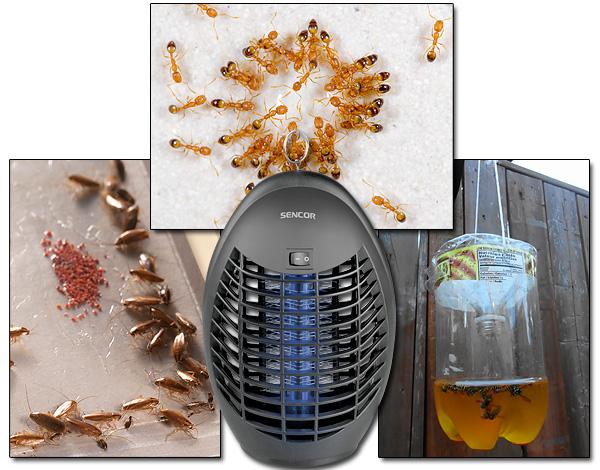 Выясняем, какие бывают типы ловушек для насекомых и в каких случаях их применение действительно дает хороший результат...