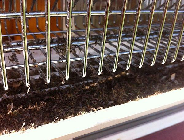 При прикосновении к металлической сетке насекомые убиваются электрическим разрядом и падают в поддон.