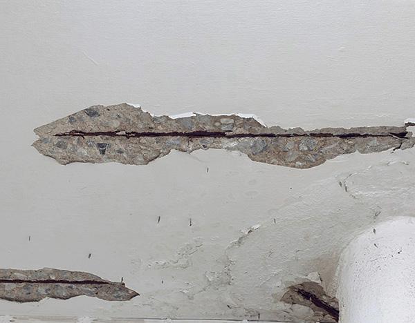 Трещины в потолке, стенах или полу также могут быть тем путем, через который вредители попадают в помещения квартиры.