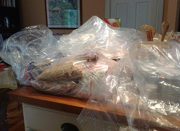 Продукты, посуду, детские игрушки и одежду можно перед обработкой поместить в полиэтиленовые пакеты.