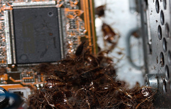Не следует направлять аэрозоль в отверстия электронных приборов.