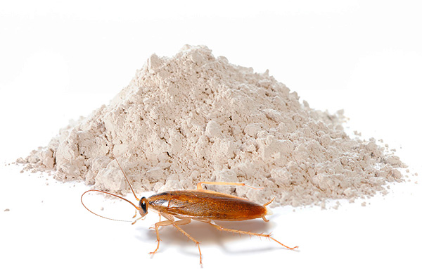 Инсектицидные порошки продолжают сегодня оставаться одними из самых популярных средств от тараканов - о таких препаратах мы дальше и поговорим подробнее...