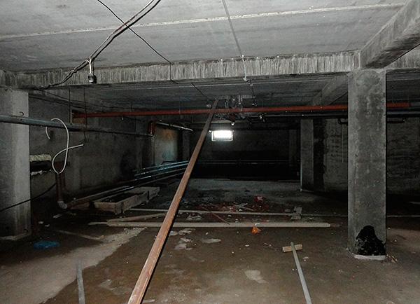 Летом в подвалах многоквартирных домов зачастую живут полчища блох.