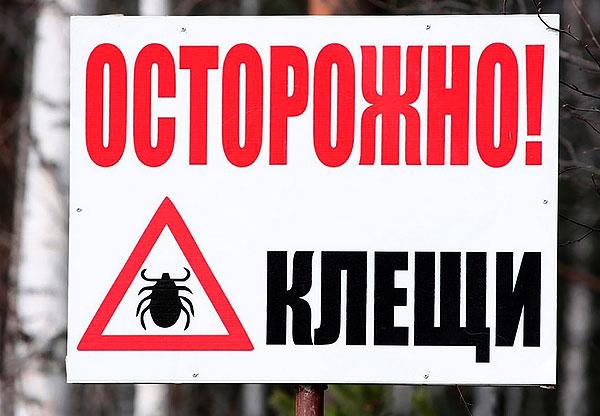 В местностях, где установлены такие знаки, желательно находиться на природе только в специальных костюмах, надежно защищающих от паразитов.