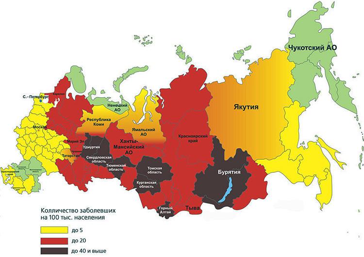 Коричневым и красным на картинке обозначены регионы РФ, наиболее опасные по клещевому энцефалиту.