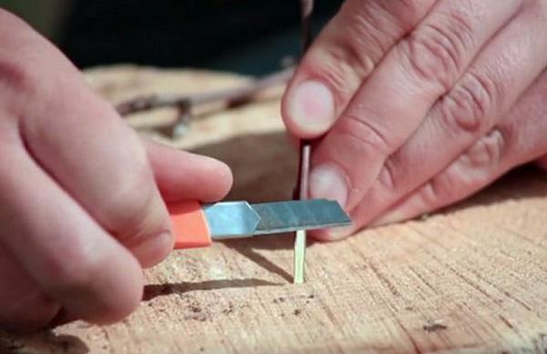 Самодельный клещедер можно сделать из деревянной палочки.