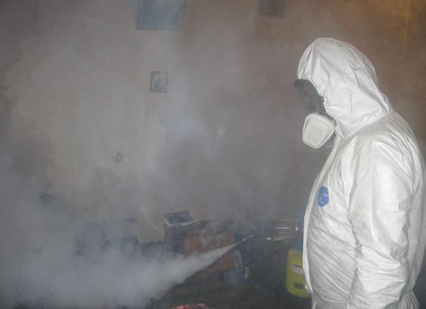 На фотографии показан пример обработки квартиры горячим туманом.