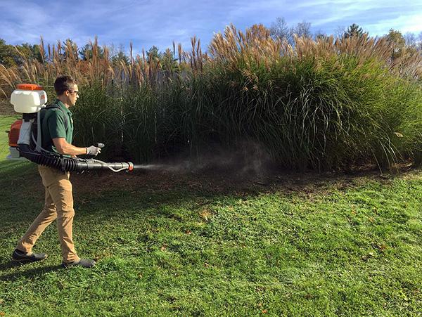 Важно также обработать территорию на расстоянии примерно 2 метра за забором участка, предварительно выкосив здесь траву.