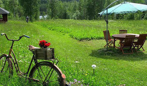 Клещи могут встретиться не только в лесу, но и на лужайке прямо перед домом.