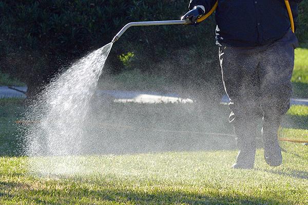 Обработка травы с помощью садового опрыскивателя