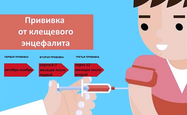 Вакцинация от клещевого энцефалита